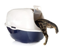 Closed cat litter box. In front of white background stock images