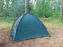 A closed dark green camping tent stands in a forest on a summer stock images