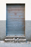 Closed door with steel rolling shutter, background Stock Images