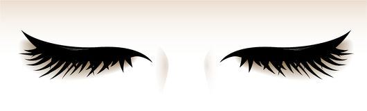 Closed eyes with big lashes.  illustration. Vector. Royalty Free Stock Image