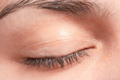 Closed female eye. Lashes closeup Royalty Free Stock Photo