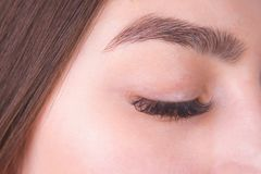 Closed female eye with long eyelashes and beautiful eyebrow, clo stock photo