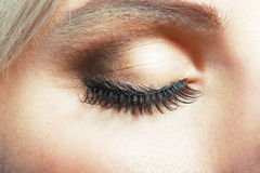 Closed female eye. Macro shot of closed female eye with evening make up and false eyelashes Stock Photos