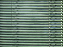 Closed green dusty blinds on the sunny day Stock Photos