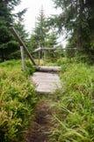 Closed hiking trail on Modry sloup in Sumava Stock Image
