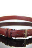 Closed Leather Belt Stock Image