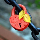 The closed red padlock Stock Image