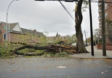 A closed street after Hurricane Sandy Royalty Free Stock Images