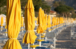 Closed umbrellas and chairs on a bathing Stock Image