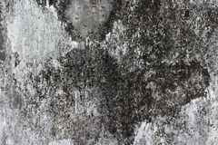 Closed up ancient grunge background surface,concrete texture Stock Photos