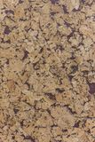 Closed up of brown cork wood board abstractpattern texture background with purple royalty free stock photos