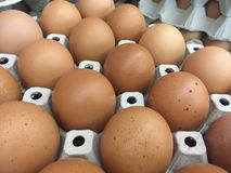 Eggs in egg box royalty free stock image