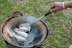 Closed up fried fish on stove, thai local life Stock Photography
