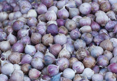 Closed up garlic in market for sale Stock Photo