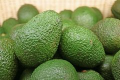Closed Up Heap of Green Bumpy Avocado Whole Fruits in the Basket. Food Texture Background stock image