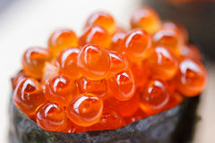 Closed up Ikura Salmon Roe  Sushi from Sushi Set on the Stone Plate. Royalty Free Stock Photo