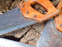 Closed up of Saw Stock Image