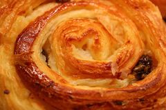 Closed up Texture of Delectable Raisin Cinnamon roll with Selective Focus for Background. Or Banner stock photography