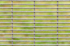 Closed up of weathered and worned BRC type fence design Stock Photography