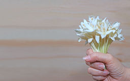 Closed up woman`s hand holding beautiful bunch of white flowers Royalty Free Stock Photography