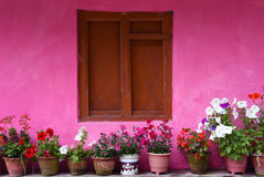 Closed up the wood windows with pink wall, in village Nepal Royalty Free Stock Images