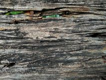 Closed up wooden surface texture Stock Photo