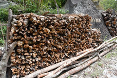 Closed up woodpile in a backyard Stock Image
