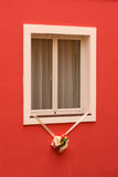 Closed window with flowers Royalty Free Stock Photography