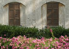Closed windows and garden Royalty Free Stock Image