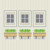 Closed Windows With Pot Plants Below Royalty Free Stock Images