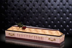 Closed wooden beige coffin with red roses covered with cloth isolated on gray luxury background. casket with shadow. Royalty Free Stock Image