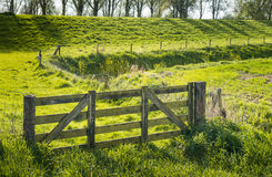 Closed wooden gate in a green rural landscape Royalty Free Stock Photos