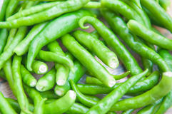Closedup Green chilli Royalty Free Stock Images