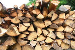 Closeiup look of firewood sorted on the ground Royalty Free Stock Image