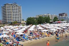 Closely positioned beach umbrellas and beach lounge chairs. On the beach of Sunny Beach on Bulgarian Black Sea coast Royalty Free Stock Photography