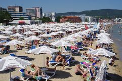 Closely positioned beach umbrellas and beach lounge chairs. On the beach of Sunny Beach on Bulgarian Black Sea coast Stock Photo