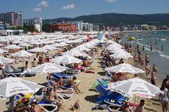 Closely positioned beach umbrellas and beach lounge chairs. On the beach of Sunny Beach on Bulgarian Black Sea coast Stock Image