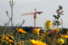 Closer ... Building Construction vs nature Royalty Free Stock Photography