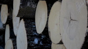 Closer image of the cut logs stock footage