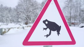 Closer look of the frog sign on the lawn stock footage