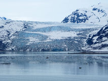 Closer View of Reid Glacier, Glacier Bay National Park Royalty Free Stock Photography