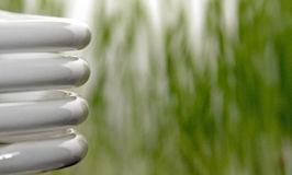 ECO Light. Closeup of fluorescent light and grass Royalty Free Stock Images