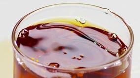 closeup Ποτήρι των κύβων σκωτσέζικου ουίσκυ και πάγου, σε αργή κίνηση απόθεμα βίντεο