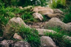 Closeup abstract of rocks on a walking hiking trekking path up i Stock Photography