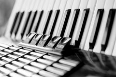 Closeup of Accordion. Black and white royalty free stock photo