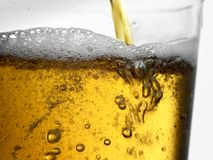 Closeup of gold amber gold beer pouring into clear glass Royalty Free Stock Photo
