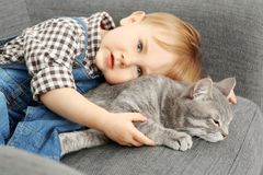 Closeup of adorable little boy with cute cat on grey  armchair Stock Photos
