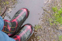 Closeup of adult rubber boots standing on mud puddle in the rain Stock Images