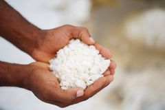 Closeup of african hands holding salt from the Quiçama Salt Flats against blurred background stock photography