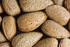 Closeup of almonds Royalty Free Stock Photos